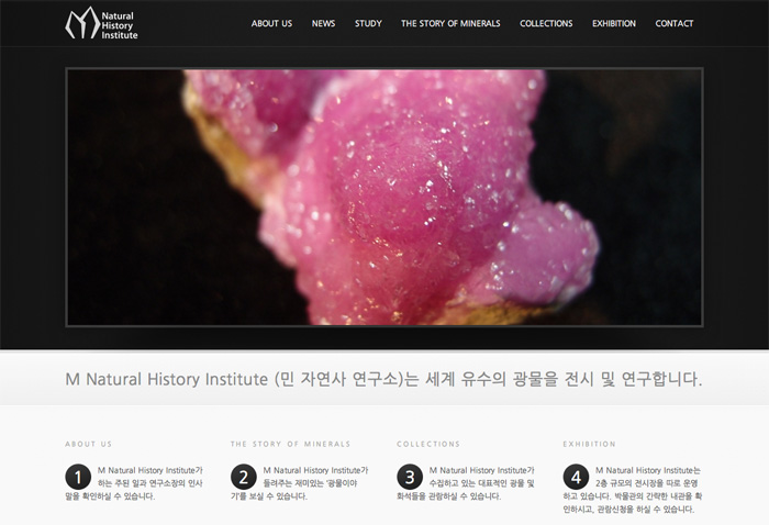 M Natural History Institute website home screen
